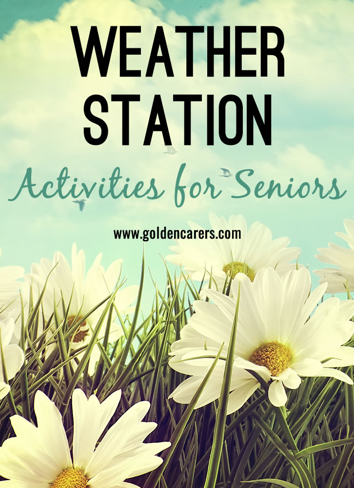 Maintaining a weather station is an absorbing activity suitable for any time of the year. Men in particular will love this activity!