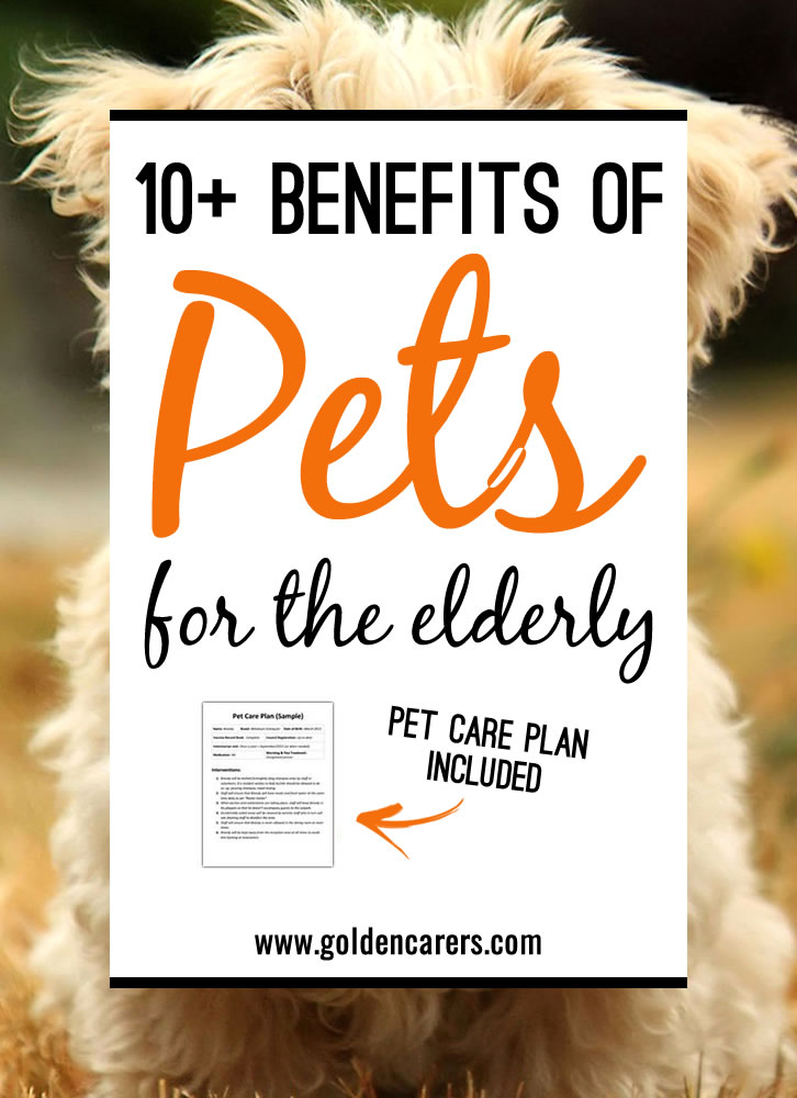Pets can help us lead happier, healthier lives. Companionship with a pet will ease loneliness, reduce depression, stimulate movement and boost moods.