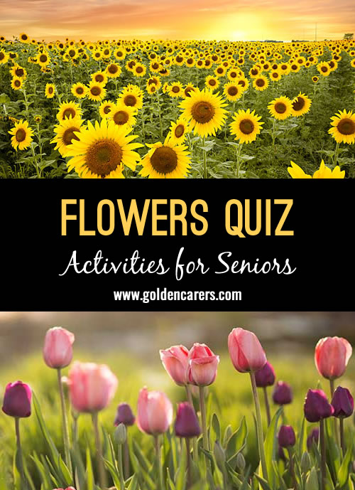 Here's a flower themed quiz to enjoy!