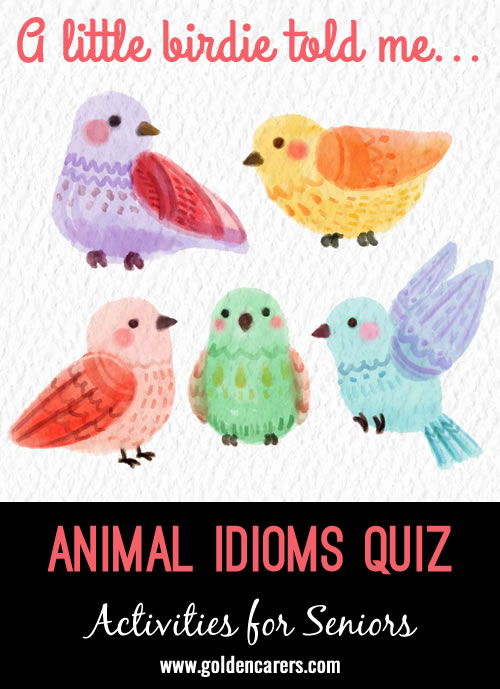 Challenge your clients to guess what these popular idioms mean! A fun and engaging activity for seniors that will have them laughing and reminiscing.