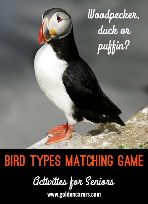 A matching game with trivia to stimulate conversation and cognitive functioning!