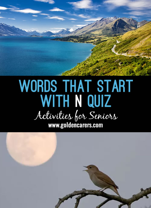 Words starting with N Quiz