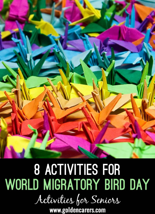 Here are some activity ideas for celebrating World Migratory Bird Day!
