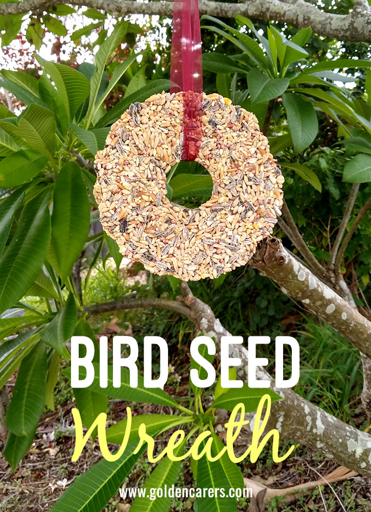 Attract birds to your backyard this Spring!