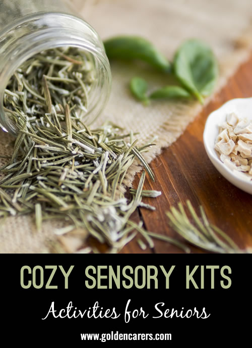 The fall and winter seasons are ideal for creating a few sensory kits that encourage coziness and relaxation. You can keep these kits in your office and use them during 1:1 interactions or for small groups.