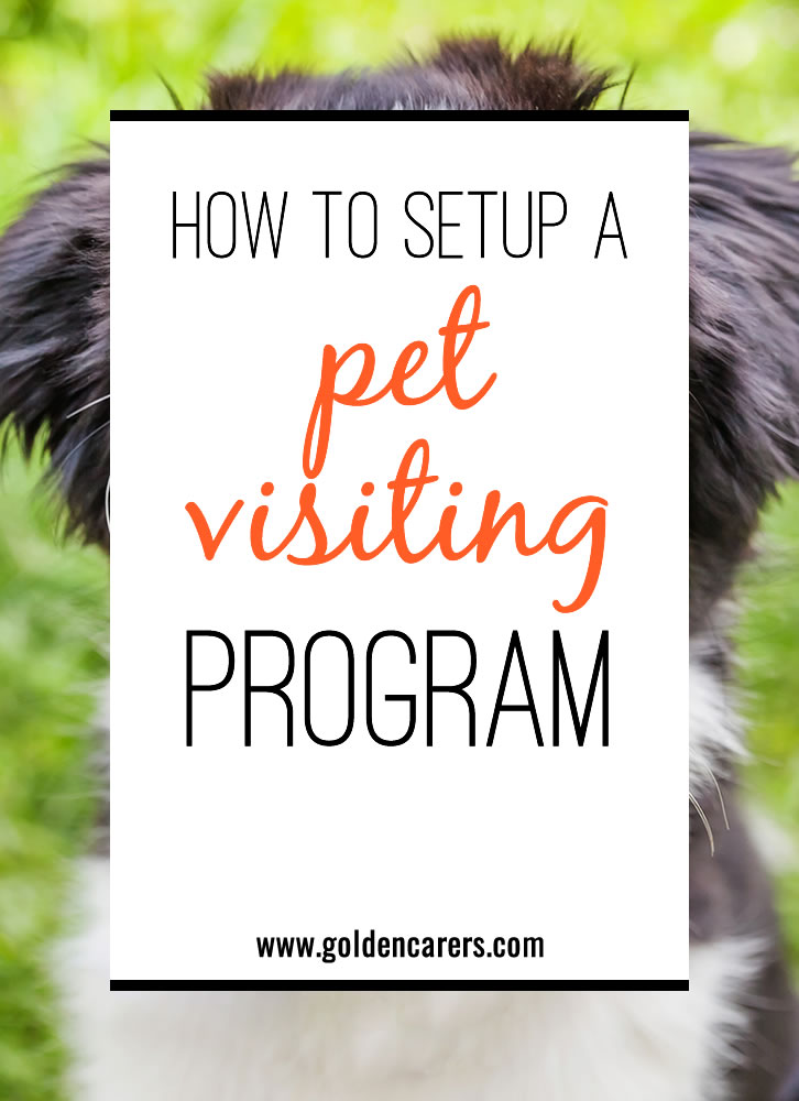 Pets can bring joy and comfort into the lives of our residents. However, it can feel overwhelming to set up a successful pet visiting program. Here's how to do it at your community.