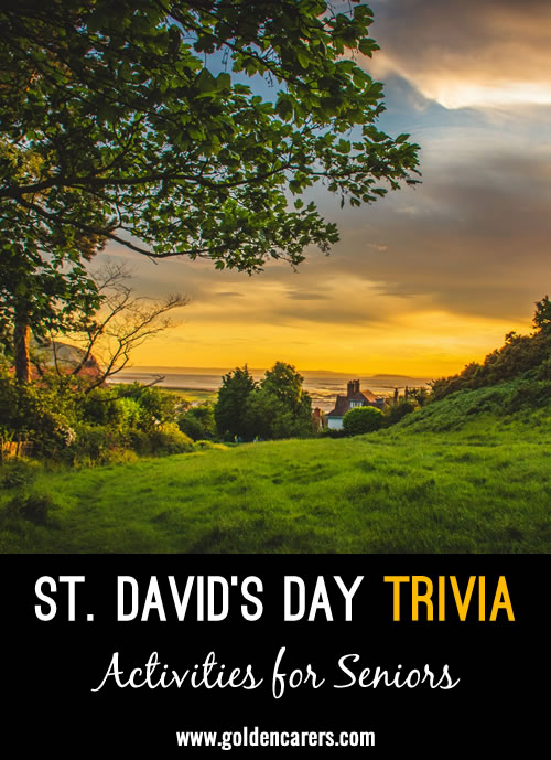 Saint David was a sixth-century missionary who spread the word of Christianity across Wales. He is the patron saint of Wales.