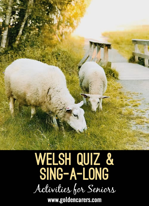 I have put together few easy(ish) questions about Wales! Also, we have a sing-along at the end of our sessions, so have put Tom Jones, Delilah lyrics on Powerpoint Enjoy!
