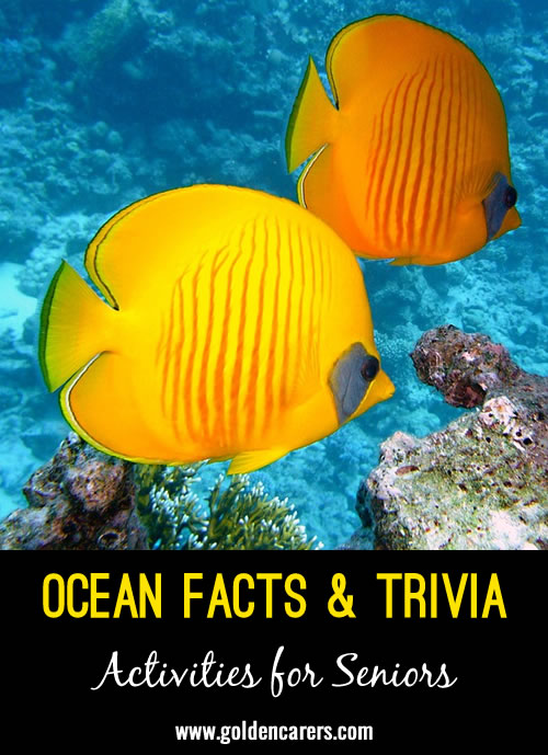 Did you know? The largest ocean in the world is the Pacific Ocean; it covers around 30% of the Earth's surface.