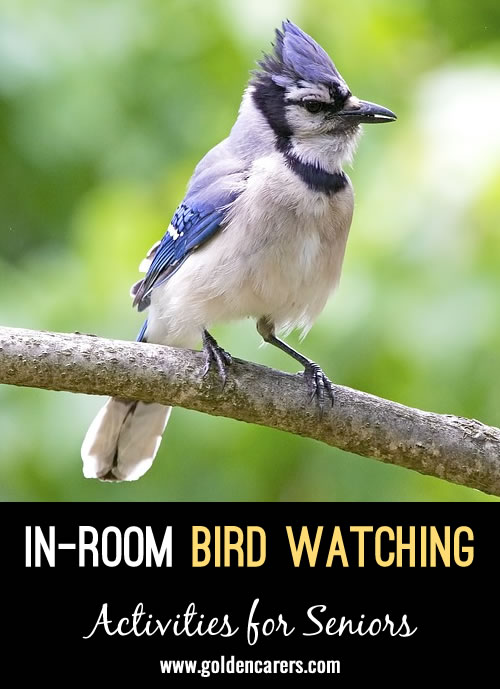 Bird watching is an easy in-room activity! I created a 2-page Publisher document with names and pictures of birds (and other creatures) to look for outside. You can easily adapt to your community by adding your community's name, and birds that are common around your part of the world.