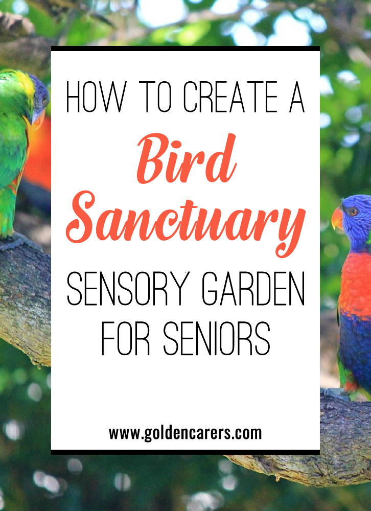 Bird watching is a rewarding pastime that can bring immense pleasure. There are so many health and wellness benefits to spending time in nature. A bird habitat is a wonderful way to entice seniors outdoors.