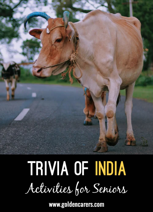 Learn about India with this trivia page!