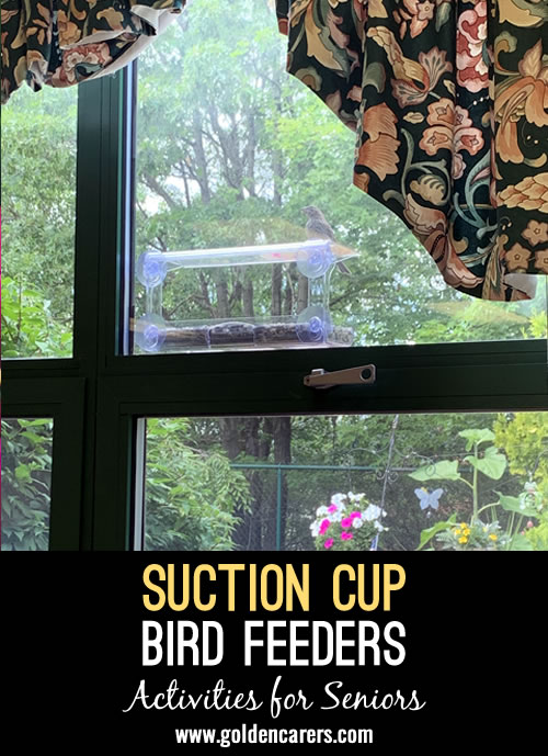 We alternated bird and humming bird feeders and within a day or two the birds were just having a feast.  What a great pleasant distraction for our clients.