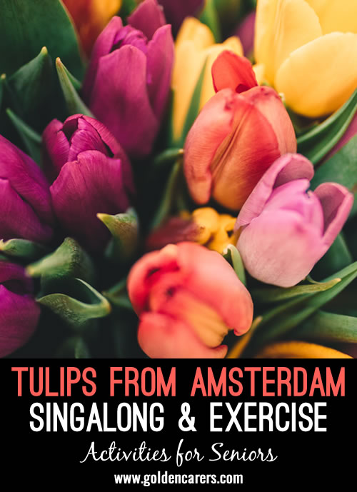 Sitting in a comfortable chair, sing, exercise, whistle, smile, use scarves, or anything your body feels like doing to the music of Tulips from Amsterdam.