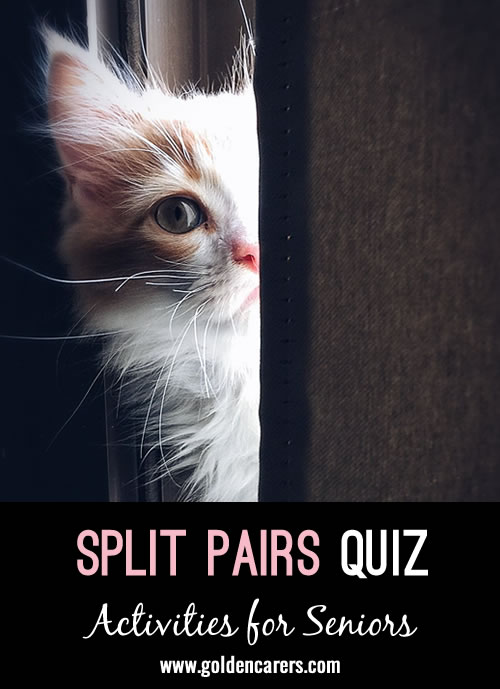 Have fun with this split pairs quiz!