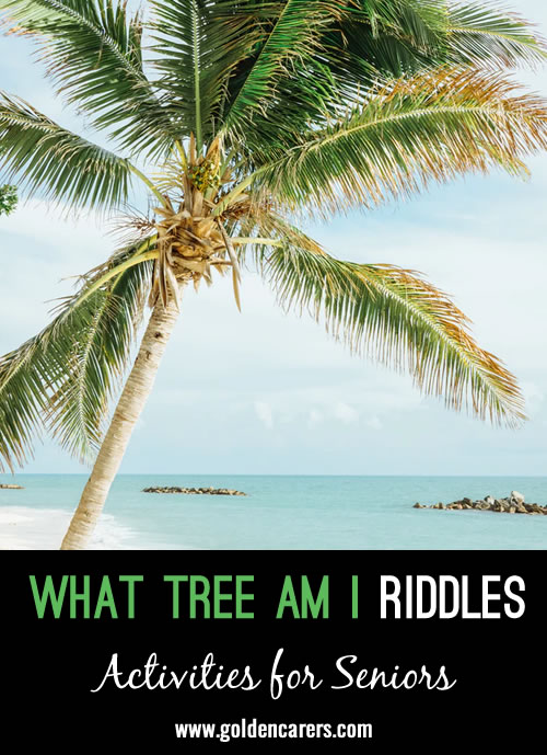 Draw a line to match each riddle to the tree it describes!