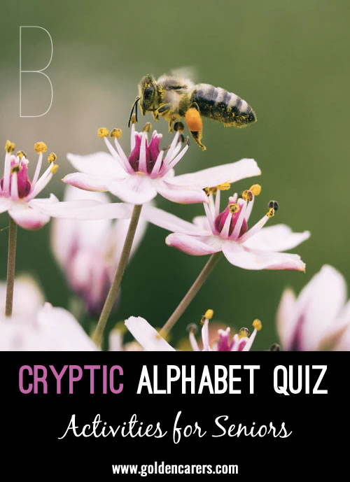 The answer to each of the following questions sound the same as a single letter of the alphabet.  For example: A flying insect = B (bee). Lots of fun!