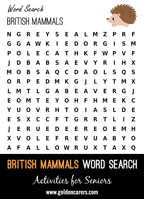 A British mammals themed word search. Forward and backward words only