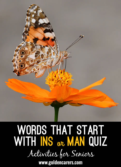 All the answers to this quiz start with INS or MAN