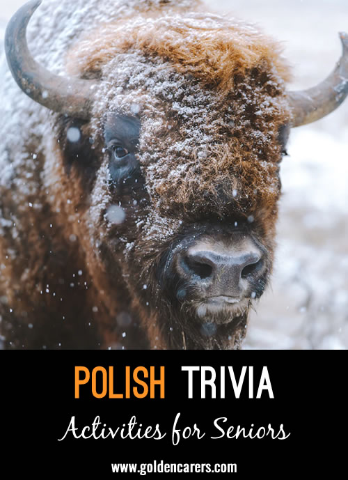 Here are some fascinating facts about Poland!