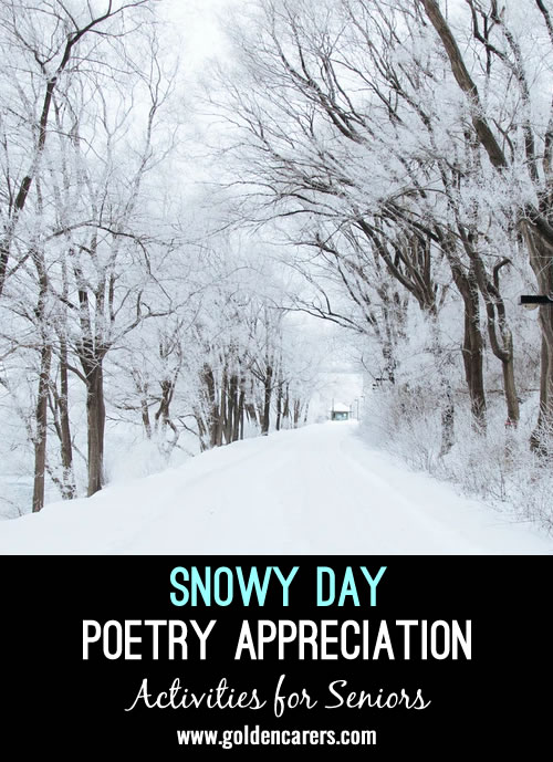 Even if you don't live in a part of the world that sees snow very often in the winter, you can still cozy up with some snowy day poetry. Use a few poems to read aloud to the group, discussing each one.