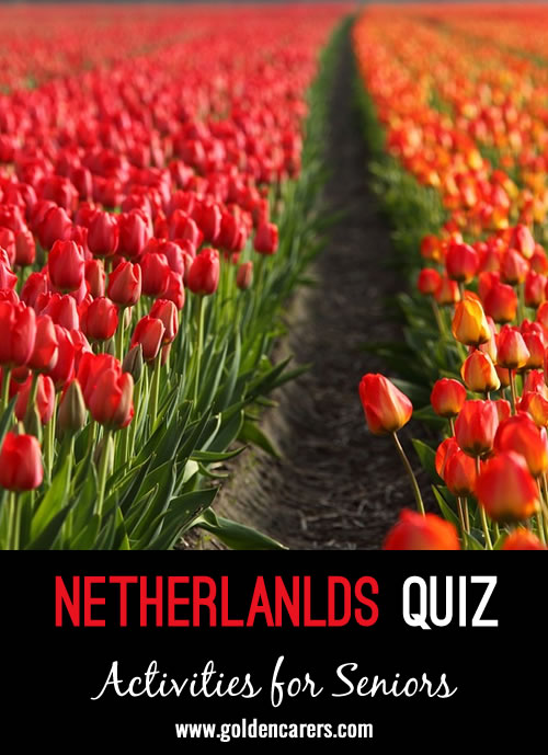 A quiz all about the Netherlands!