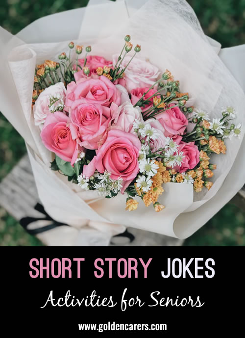 Here are some more funny short story jokes to share!