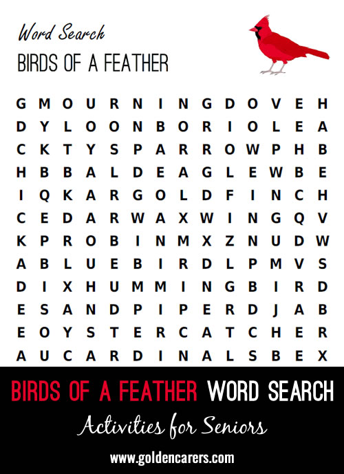 Birds of a Feather Word Search