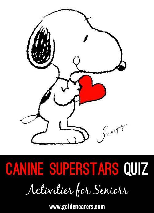 Canine Superstars Quiz