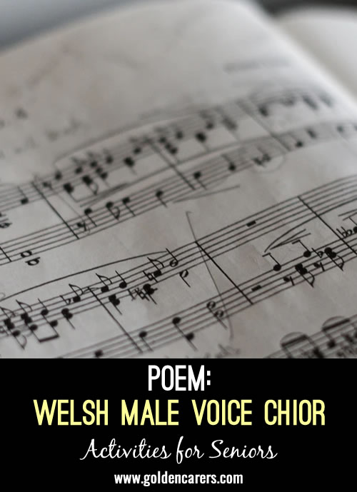 A poem composed by a Chorister of one of the Welsh Choirs during this Pandemic about a ficitious Male Voice Choir.