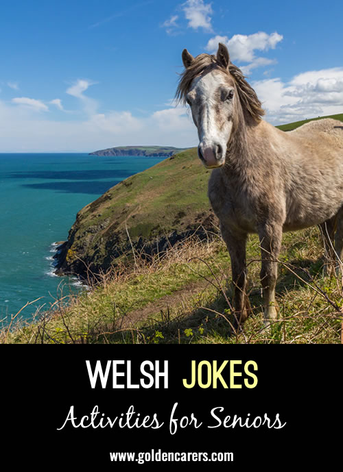 Here are some Welsh jokes to share on St. David's Day.