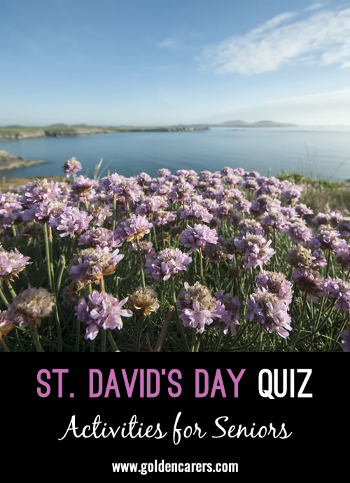 Here is a Welsh quiz to enjoy on St. David's Day!