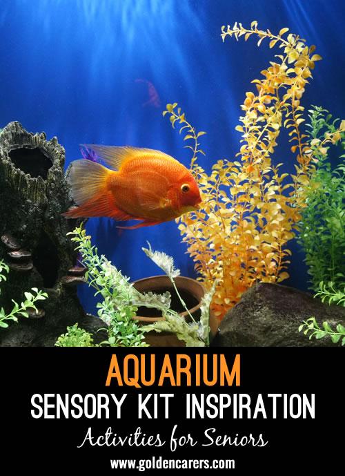 Aquarium Sensory Kit Inspiration