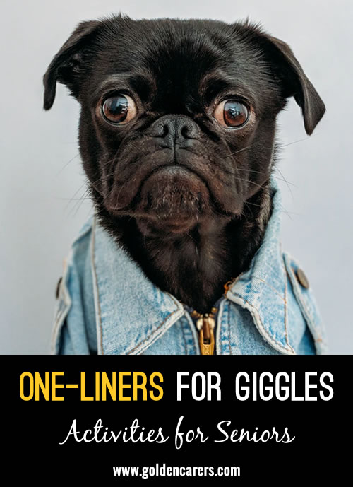 One Liners for Giggles
