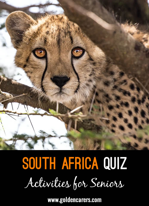 Here's a fun quiz all about South Africa!