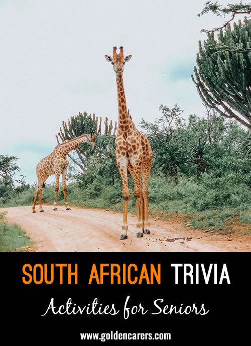 16 Fun Facts about South Africa