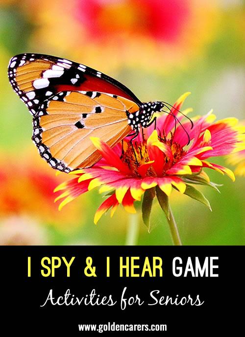 I Spy with My Big Ole' Eye & I Hear with My Big Ole' Ear Observation Game!