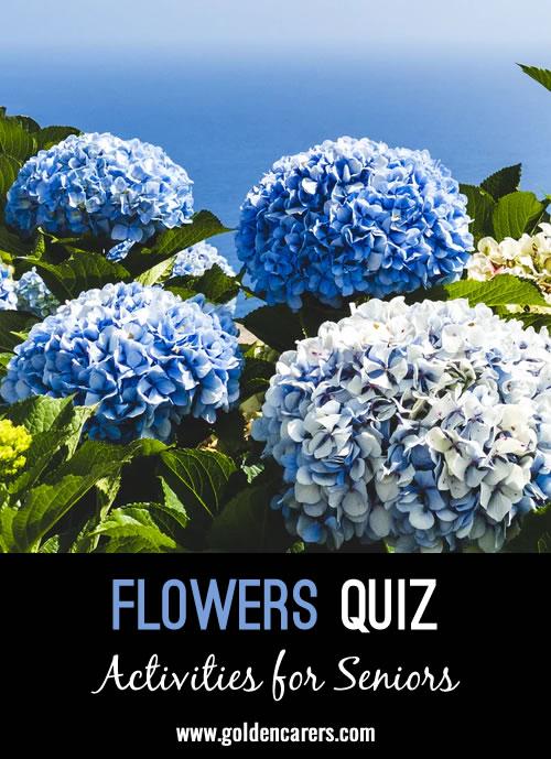 Here is a fun flower quiz to enjoy!