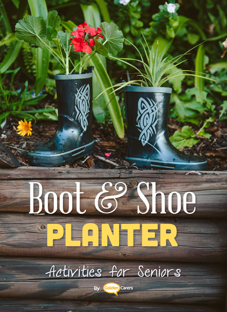 Shoe planters are fun to make and will give your garden or courtyard a whimsical flair. A fun activity for seniors!