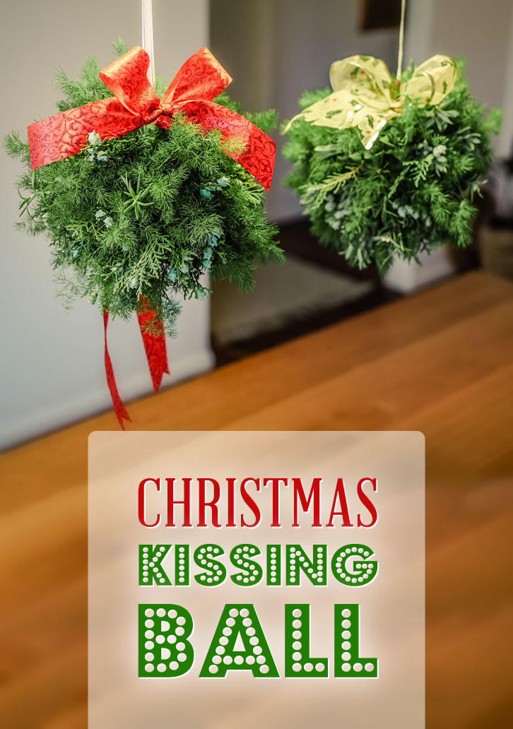 Decorate your facility or home with these beautiful evergreen balls.
