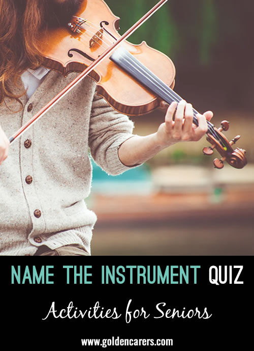 Name The Musical Instruments Visual Quiz
