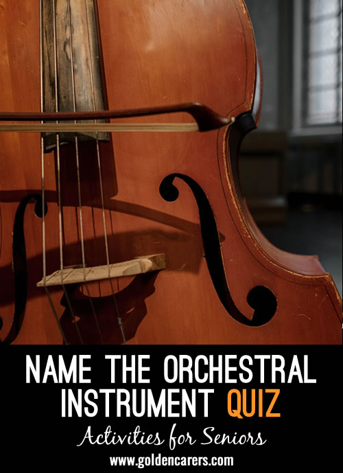 Name the Orchestral Instrument Quiz - Can you name them all?