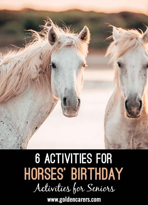 6 Activities for Horses' Birthday