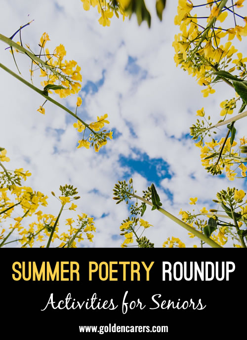 Summer Poetry Roundup