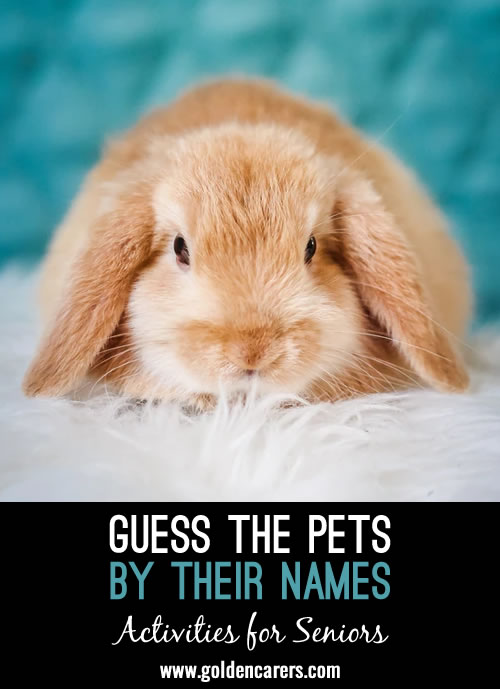Which creature does each of the following pet names indicate?
