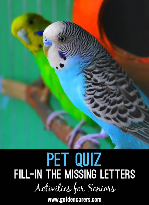 Fill-in the missing letters to reveal the animals and breeds!