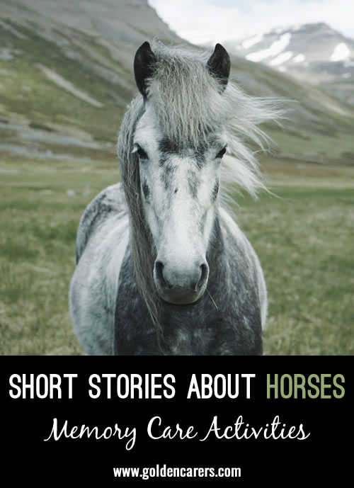 Short Stories about Horses