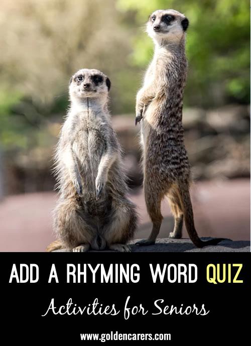 Add a Rhyming Word Quiz #2