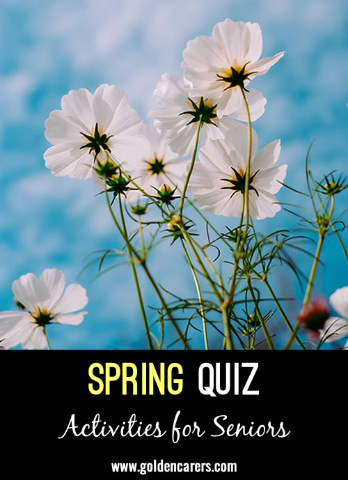 All answers relate to Spring!