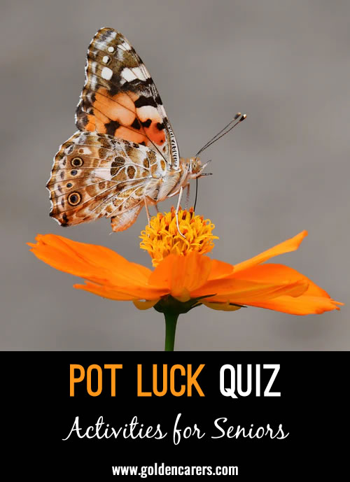 Here is the next pot luck quiz!